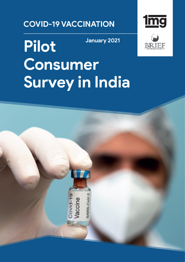 Pilot Consumer Survey in India